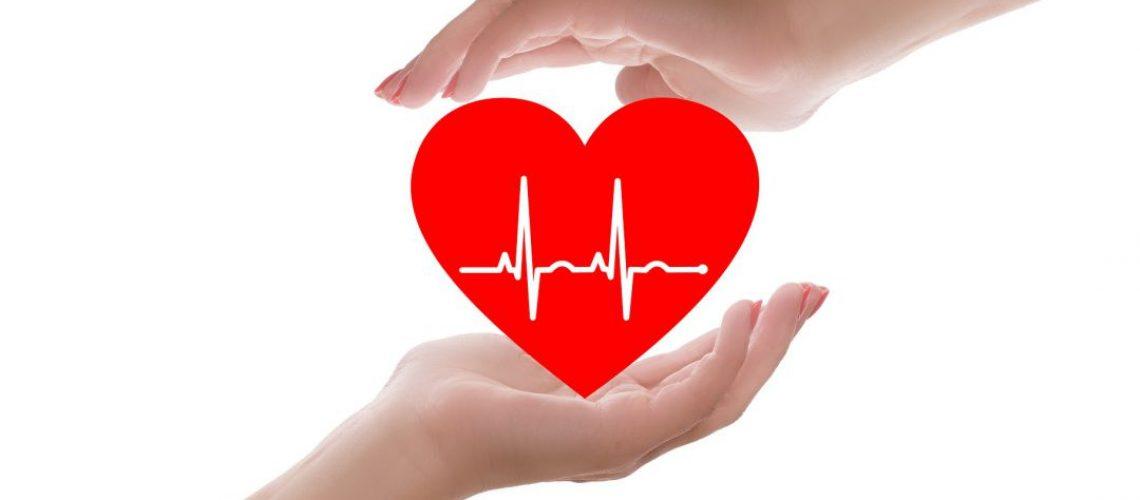 Boletin dia del corazon